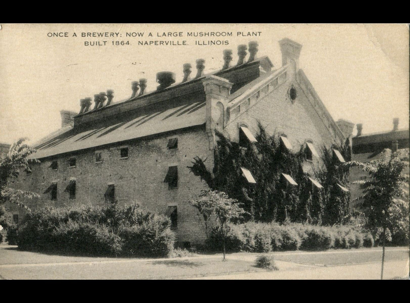 Stenger Brewery building as a mushroom plant, postmarked October 23, 1941